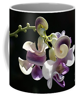 Flower-snail Flower Coffee Mug