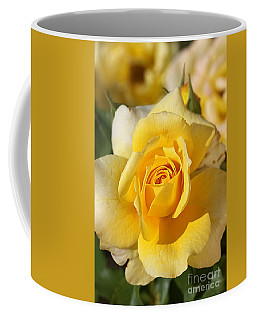 Flower-yellow Rose-delight Coffee Mug by Joy Watson