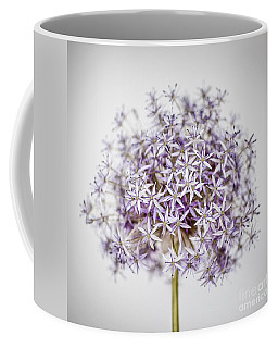 Coffee Mug featuring the photograph Flowering Onion Flower by Elena Elisseeva