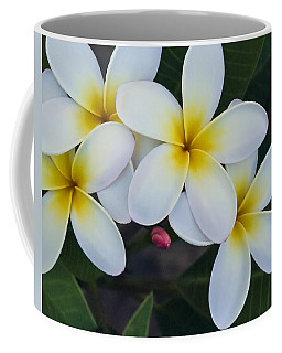 Flowers And Their Bud Coffee Mug