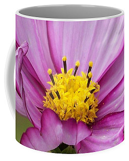 Flowers For The Wall Coffee Mug by Eunice Miller