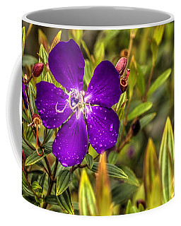 Flowers Love Water Coffee Mug