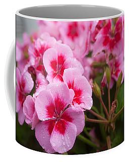 Flowers On A Rainy Sunday Afternoon Coffee Mug