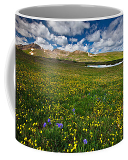 Flowers On The Divide Coffee Mug