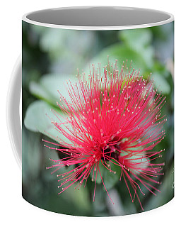 Coffee Mug featuring the photograph Fluffy Pink Flower by Sergey Lukashin
