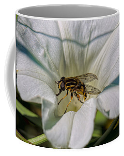 Coffee Mug featuring the photograph Fly In White Flower by Leif Sohlman