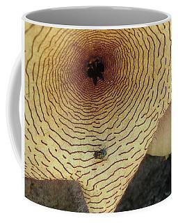 Fly To Me Coffee Mug