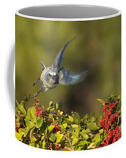 Flying Florida Scrub Jay Photo Coffee Mug