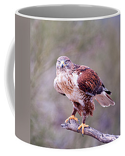 Coffee Mug featuring the photograph Focus by Dan McManus