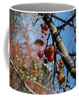 Focused Coffee Mug by Neal Eslinger