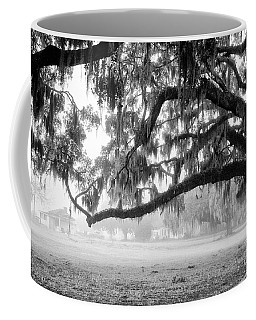 Foggy Morning On Coosaw Plantation Coffee Mug