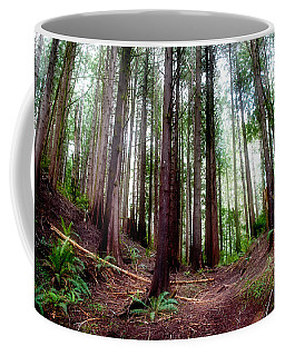 Coffee Mug featuring the photograph Forest by Adria Trail