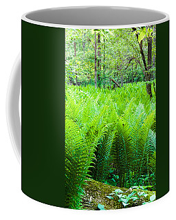Coffee Mug featuring the photograph Forest Ferns   by Lars Lentz