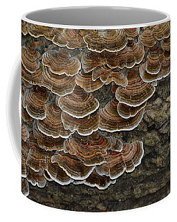 Forest Floor Number 3 Coffee Mug