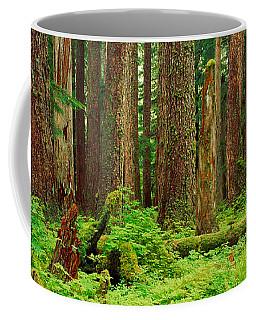 Forest Floor Olympic National Park Wa Coffee Mug