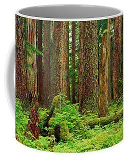 Forest Floor Olympic National Park Wa Coffee Mug