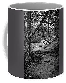 Forgotten Path Coffee Mug by Charlie Duncan