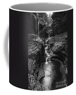 Fountain Of Youth Bw Coffee Mug