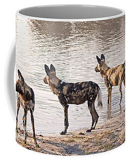 Coffee Mug featuring the photograph Four Alert African Wild Dogs by Liz Leyden