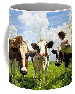 Four Chatting Cows Coffee Mug