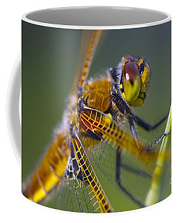 Four Spotted Chaser Coffee Mug