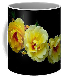 Four Stages Of Bloom Of A Yellow Rose Coffee Mug