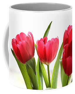 Four Tulips Coffee Mug