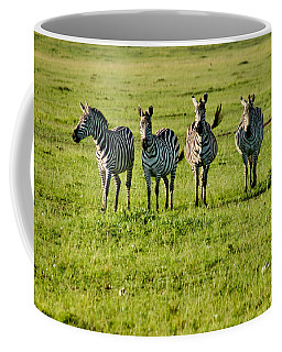 Four Zebras Coffee Mug