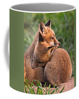 Fox Cubs Cuddle Coffee Mug