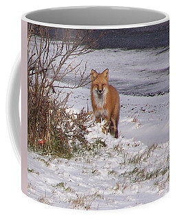 Fox In My Yard Coffee Mug