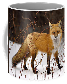 Fox In Winter Coffee Mug