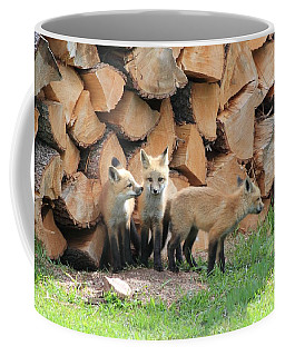 Fox Kits Coffee Mug