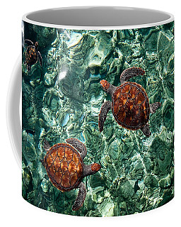 Fragile Underwater World. Sea Turtles In A Crystal Water. Maldives Coffee Mug by Jenny Rainbow