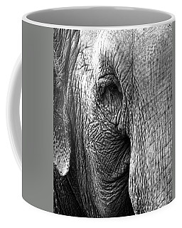 Fragility  To Forget  Coffee Mug