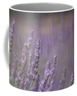 Fragrance Coffee Mug