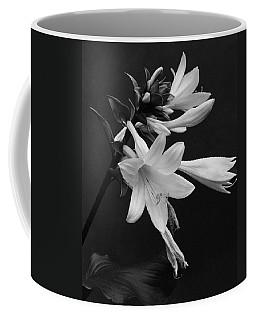 Fragrant Plantain Lily Coffee Mug