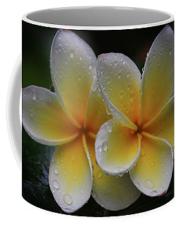 Frangipani Pair Coffee Mug by Keith Hawley