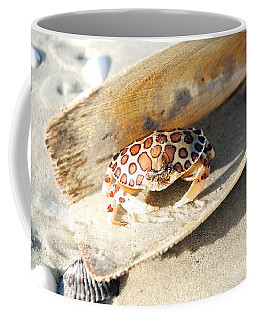 Frank The Spotted Crab Of Anna Maria Coffee Mug