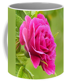 Friendship Rose Coffee Mug