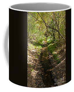 Frijole Creek Bandelier National Monument Coffee Mug