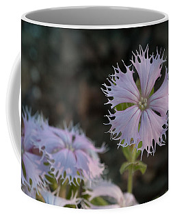 Coffee Mug featuring the photograph Fringed Catchfly by Paul Rebmann