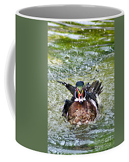 Frisky - Wood Duck Coffee Mug by Adam Olsen