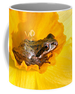 Frog And Daffodil Coffee Mug