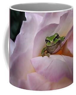Frog And Rose Photo 1 Coffee Mug by Cheryl Hoyle