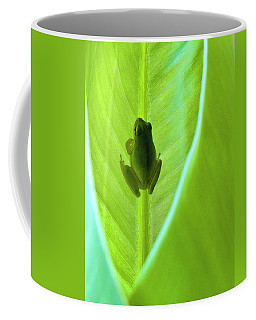 Coffee Mug featuring the photograph Frog In Blankie by Faith Williams