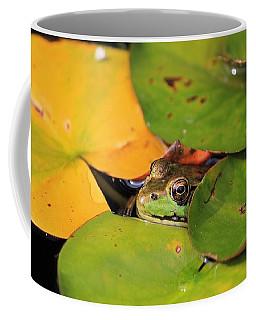Frog Pond 3 Coffee Mug