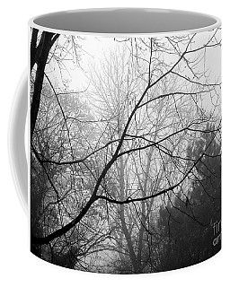 Coffee Mug featuring the photograph From Hence We Come by Robyn King