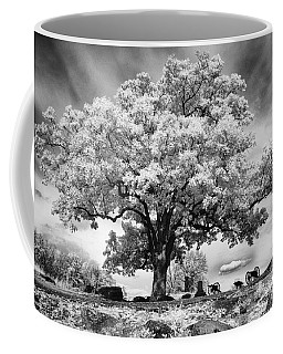 From The Top Of Devil's Den Coffee Mug