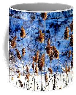 Coffee Mug featuring the photograph Fronds In Winter by Eleanor Abramson