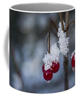 Frost Berries Coffee Mug